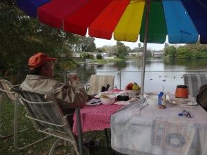 Pondside-at-Webels.Ducks-on-Pond-1