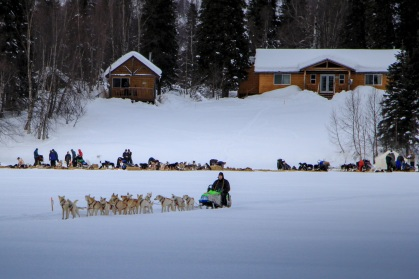 sleddogs-winterlakelodge-alaska