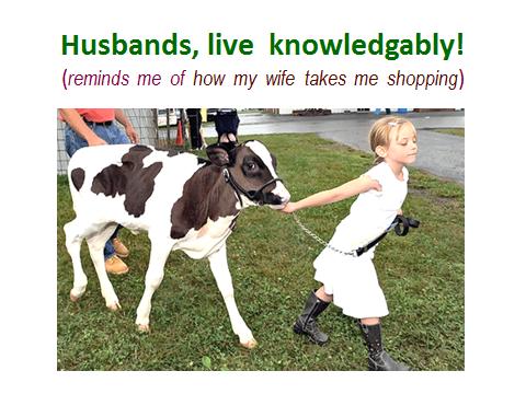 going-shopping-livestock-show-analogy